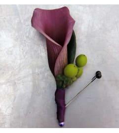 calla lily eggplant