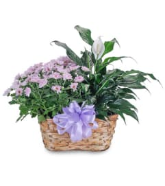 Blooming Peacefully Basket