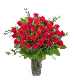 Room Full of Roses DW