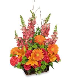 Brilliant Basket arrangement