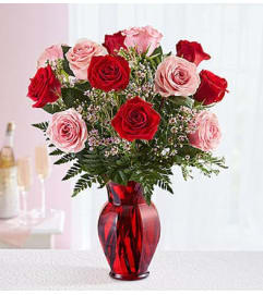 One Dozen Pink and Red Roses in Red Vase