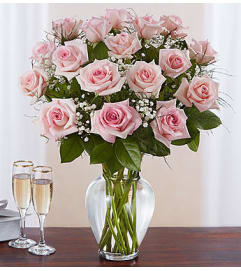 Pink Roses Eighteen