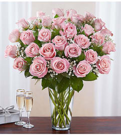 Pink Roses Three Dozen