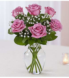 Lavender Roses Six