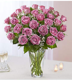 Lavender Roses Three Dozen