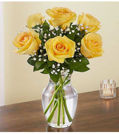 Yellow Roses Six