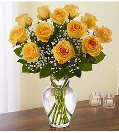 Yellow Roses One Dozen