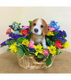 Beagle in a Basket