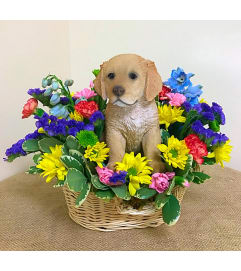 Glorious Golden in a Basket