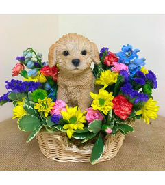 Lovely Labrador in a Basket