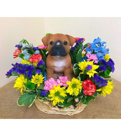 Black Staffordshire in a Basket