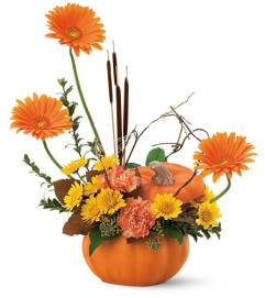 Autumn Pumpkin by Teleflora