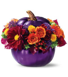 Royal Pumpkin by Teleflora