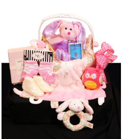 Ultimate Baby Girl Welcome Basket