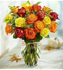 1800 Flowers Rose Elegance™ Premium Autumn Roses