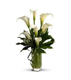 Classic Calla Vase
