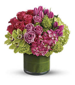 Sensational Blooms