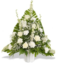 Elegant White Traditional Display