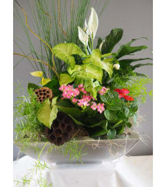 Luxurious Custom Dish Garden