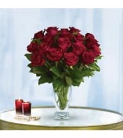 2 Dozen Premium Red Roses