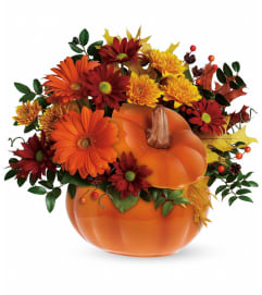 Pleasing Pumpkin