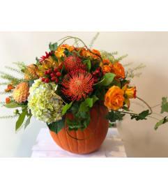 Real Pumpkin Inspired Fall