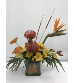 Proteas in Autumn