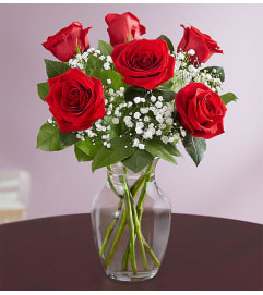 Red Rose 1/2 Dozen