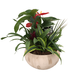 The Anthurium Tropical Planter