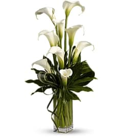 Classic Calla Vase T83-1
