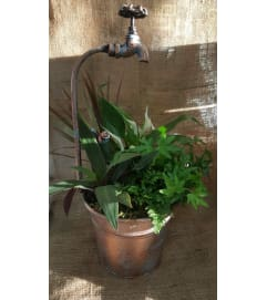 Faucet Container-Plants
