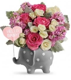 Sweet Baby Elephant-PINK