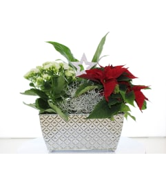 SILVER BELLS HOLIDAY PLANTER