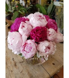 SIMPLY GORGEOUS PEONIES