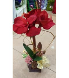 Single Silk Amaryllis
