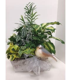 Christmas Peace Dove Planter