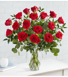 Eighteen Heart's Desire Roses