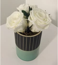 Preserved Rose Arrangement White