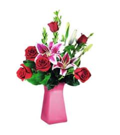 Six Rose Premium