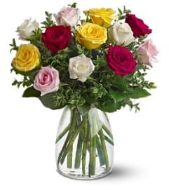 Teleflora A Dozen Mixed Roses