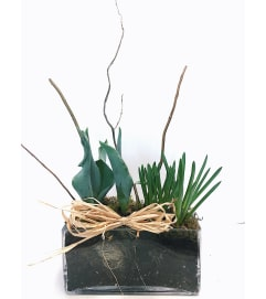 Spring Bulb Glass Planter