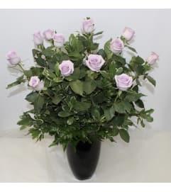 Dozen Lavender Long Stem Roses