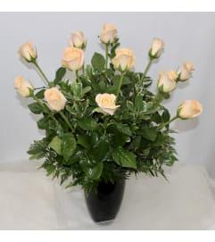 Dozen Peach Long Stem Roses