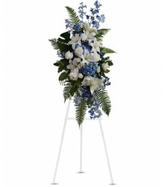 Ocean Breeze Spray by Teleflora