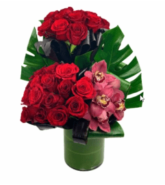 Roses are the Key to my Heart