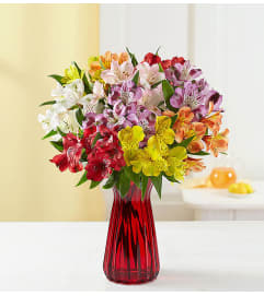 Peruvian Lilies In a Vase