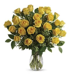 Yellow Bae Roses 24