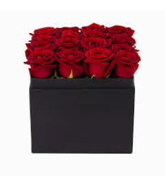 Black Box of Roses