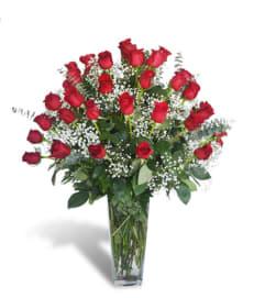 24 Rose Kisses