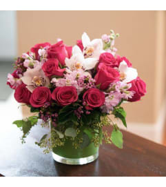 Blushing Valentine